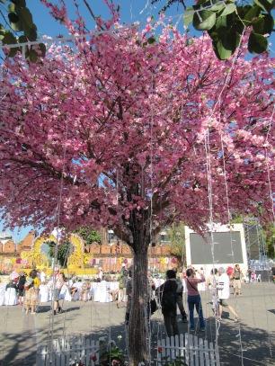 un faux cerisier japonnais! ;-)