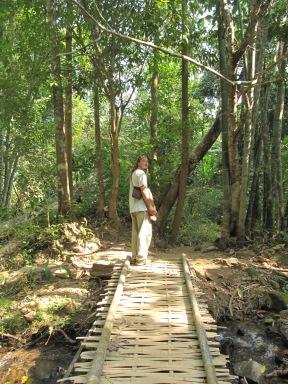Au moment même où je prends la photo j'entends des bambous tomber pas loin de me tête, j'ai eu super peur!