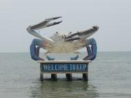 La ville des crabes